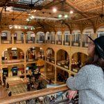 Bologna biblioteca