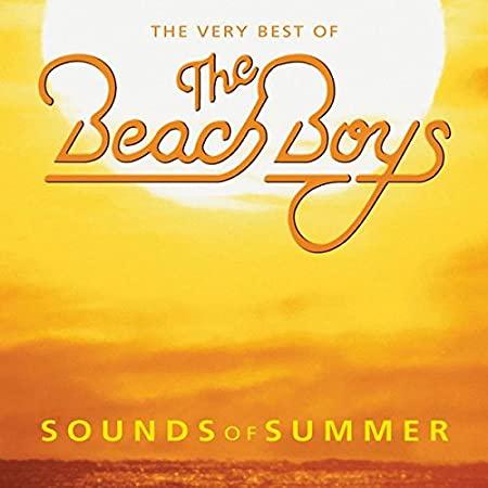 Viaggiando da casa - Beach Boys